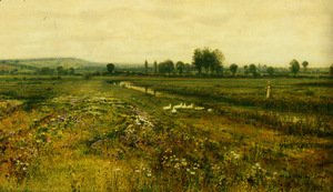 An Extensive Meadow Landscape with Geese by a Stream